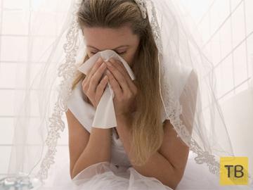 Шкуркина свадьба