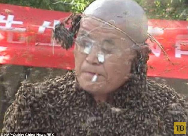 326 000 пчел на китайском пчеловоде (7 фото + видео)