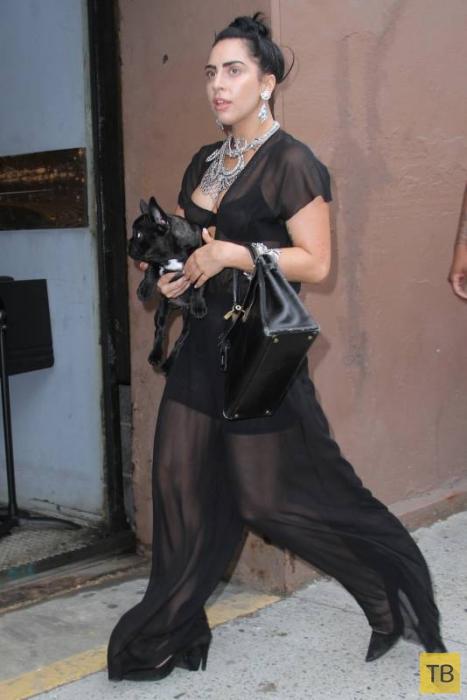 Откровенный наряд Леди Гагы (18 фото + видео)