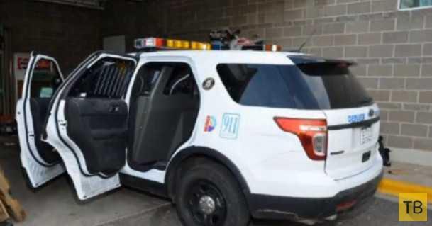 Случай в полицейской практике (5 фото)