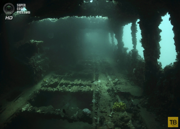 """Путешествие к останкам судна """"Барон Гауч"""" в Хорватии (8 фото)"""