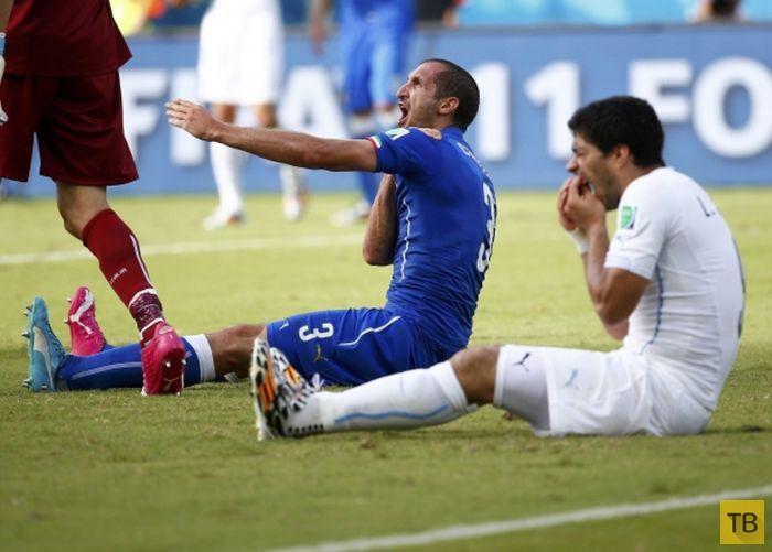 Луис Суарес укусил игрока сборной Италии (6 фото)