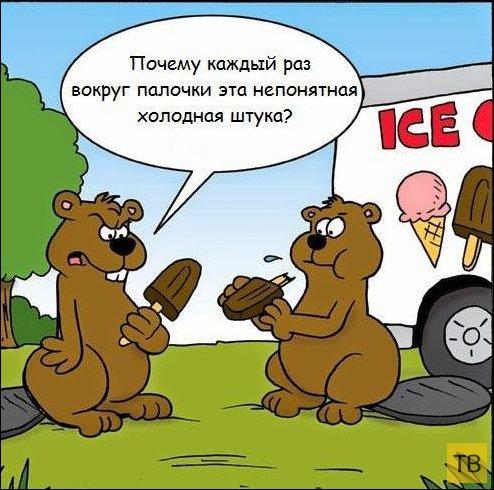 Веселые комиксы и карикатуры, часть 148 (16 фото)