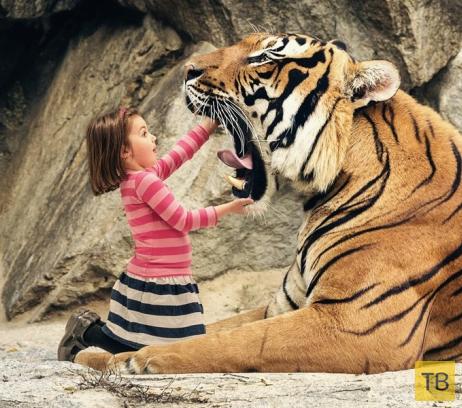 Красивые и эмоциональные фотографии за июнь (27 фото)