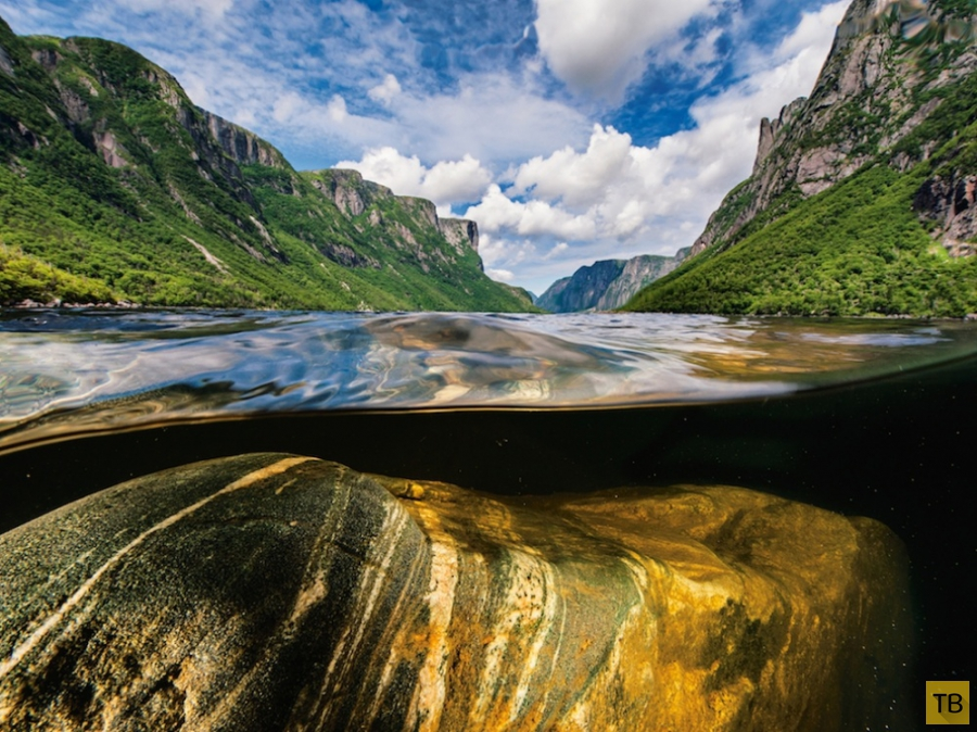 Лучшие фотографии National Geographic за июнь (25 фото)
