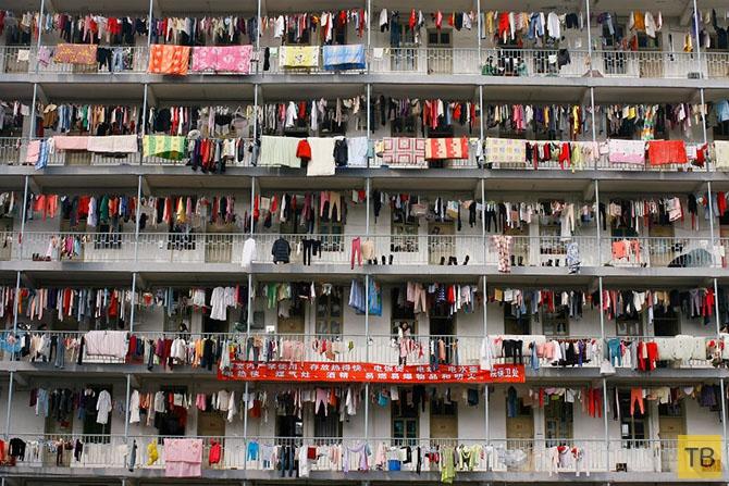 Столпотворения в разных странах (26 фото)