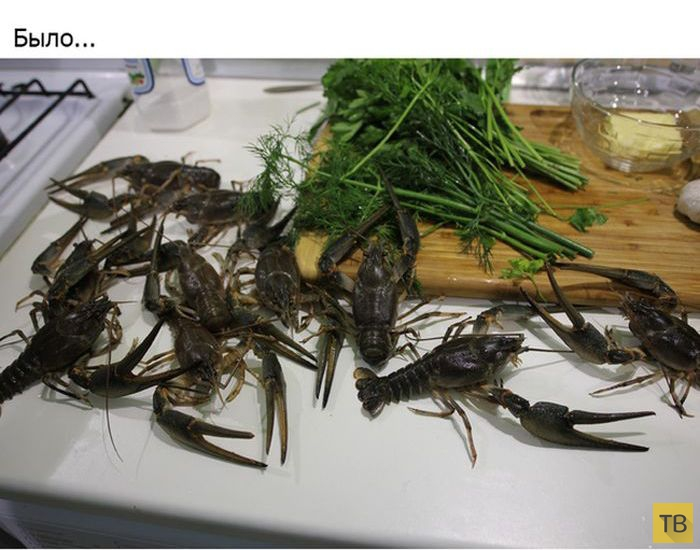 Простой и понятный рецепт приготовления вкуснейших раков (17 фото)