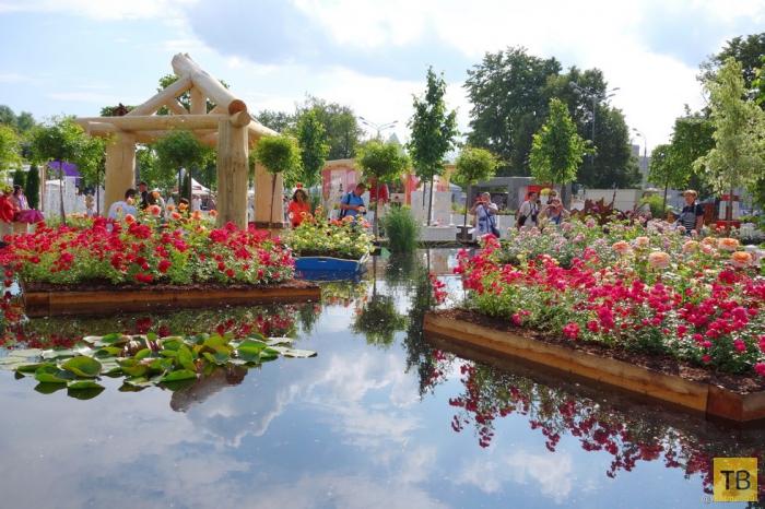 Moscow Flower Show - третий по счету фестиваль цветов, развлечений и положительных эмоций (10 фото)