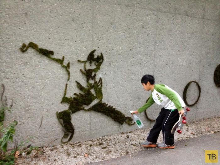 Как сделать живые граффити (6 фото)
