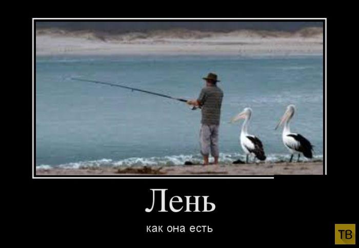 Подборка демотиваторов 15.07.2014 г (32 фото)