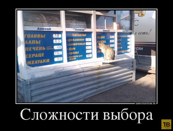 Подборка демотиваторов 16. 07. 2014 г (30 фото)
