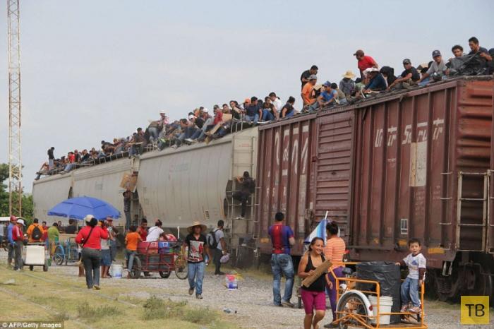 Опасный путь в Америку (9 фото)