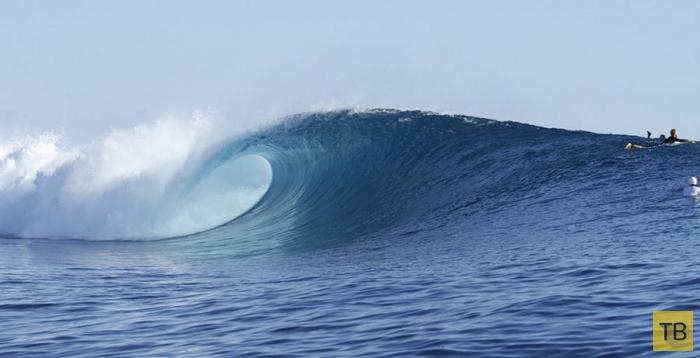 Большие волны Таваруа (8 фото)