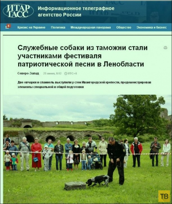 Смешные заголовки новостей (24 фото)