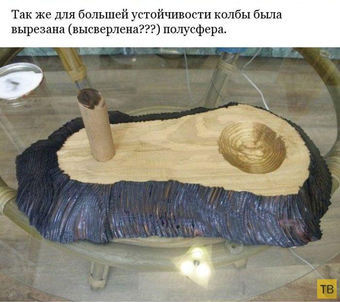 Мини-сад внутри лампочки своими руками (22 фото)