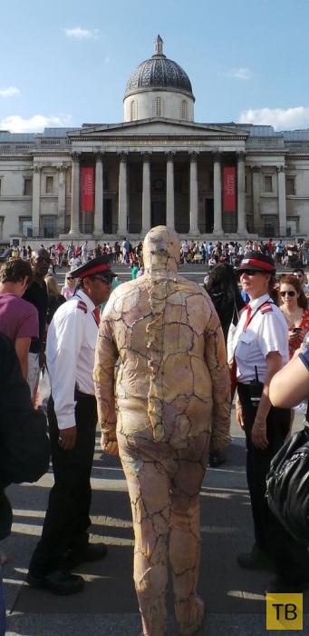 Очень странный костюм (5 фото)