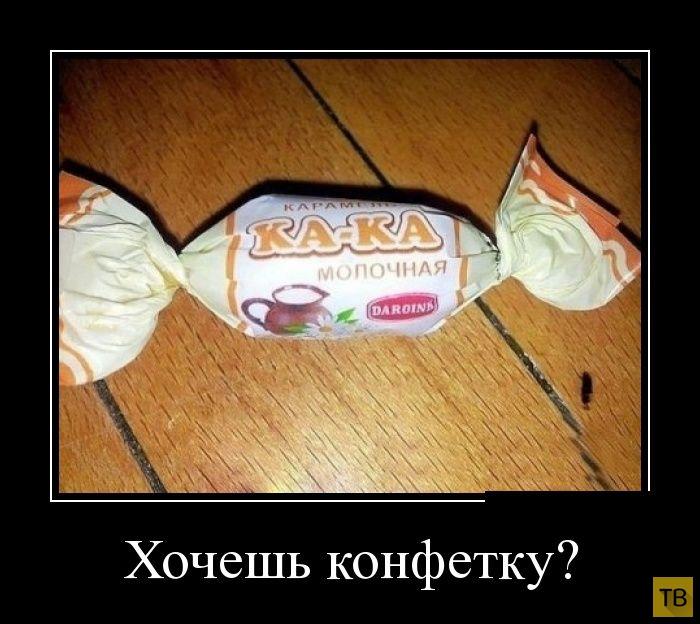 Подборка демотиваторов 18. 08. 2014 (31 фото)