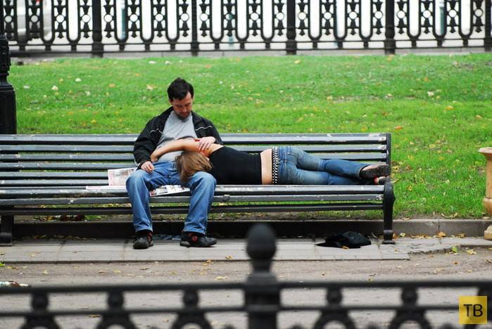 Один час из жизни скамейки (36 фото)