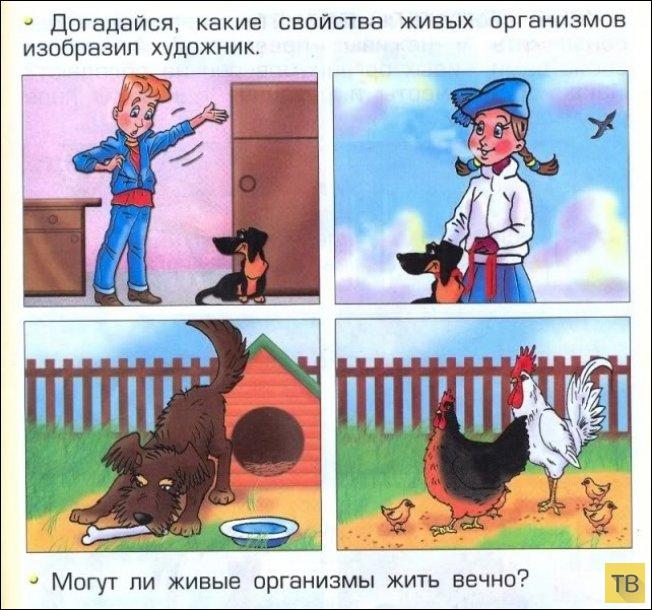 Маразмы из школьных учебников (27 фото)