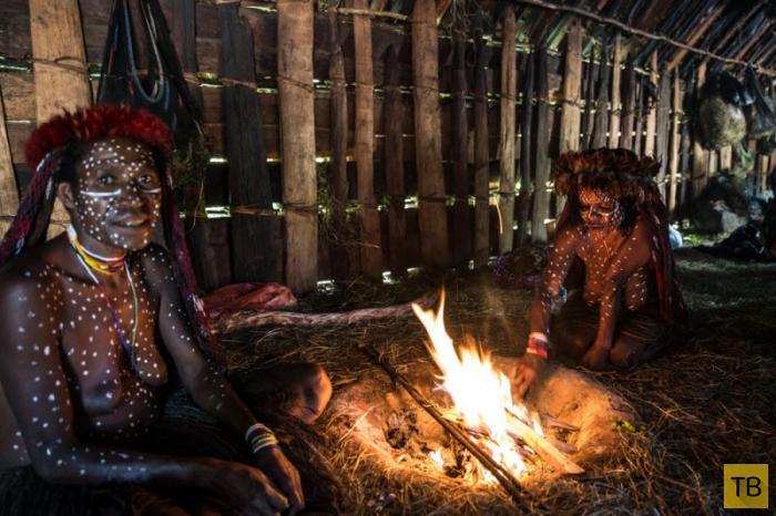 Племена папуасов - фоторепортаж из долины Балием (17 фото)