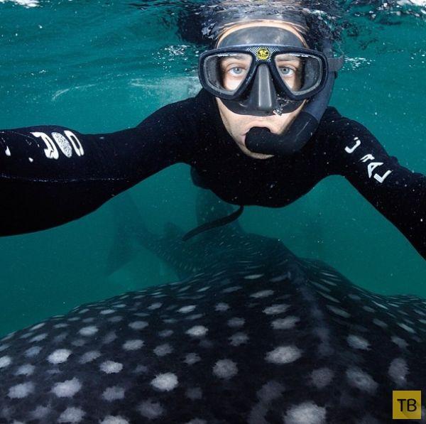Самые сумасбродные фотографии из инстаграма National Geographic (19 фото)