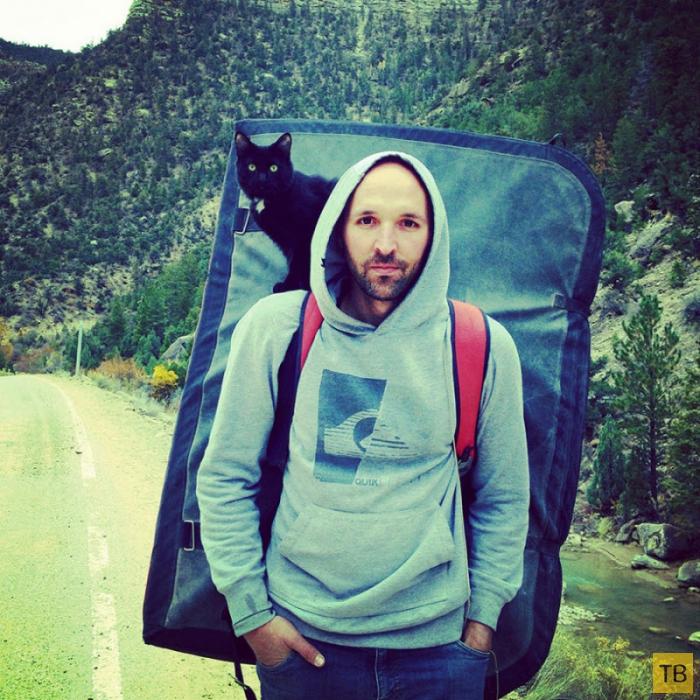 Кошка Милли – покорительница горных вершин (24 фото)