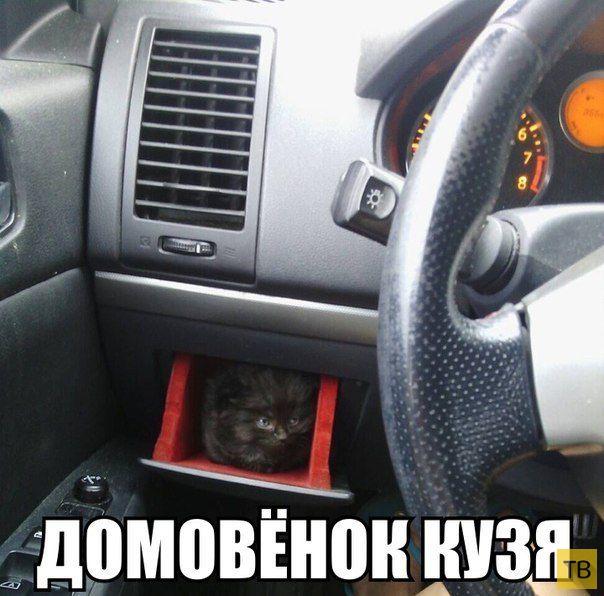 Автомобильные приколы, часть 11 (26 фото)