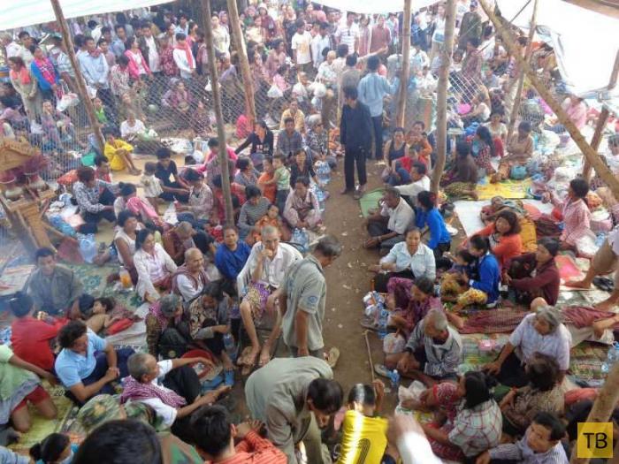 Тысячи больных устремились к ребенку с невероятными способностями (7 фото)