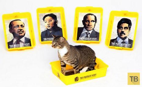 Коты против мировых лидеров (4 фото)