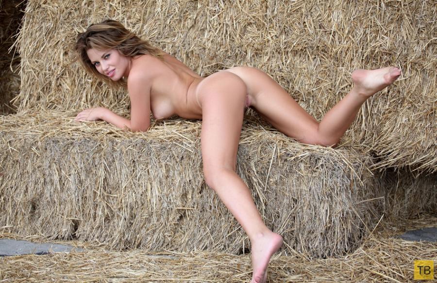 В жаркий полдень на сеновале (17 фото)