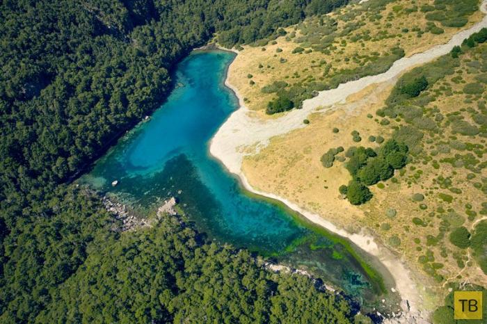Новозеландское Голубое озеро - самое прозрачное в мире (6 фото)