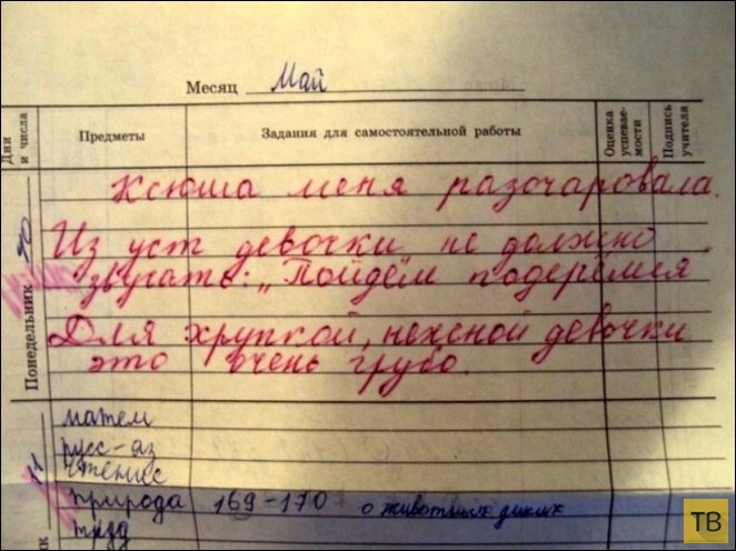 Прикольные записи в школьных дневниках (21 фото)