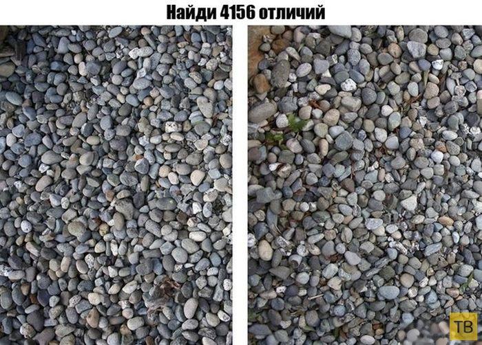 Подборка прикольных фотографий, часть 245 (92 фото)