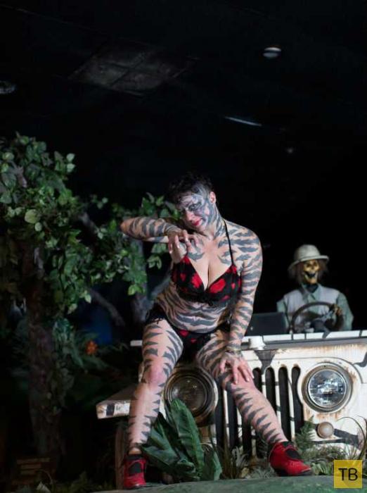 40-летнеяя американка Катцен Гоббс потратила полжизни на превращение в тигрицу (5 фото)