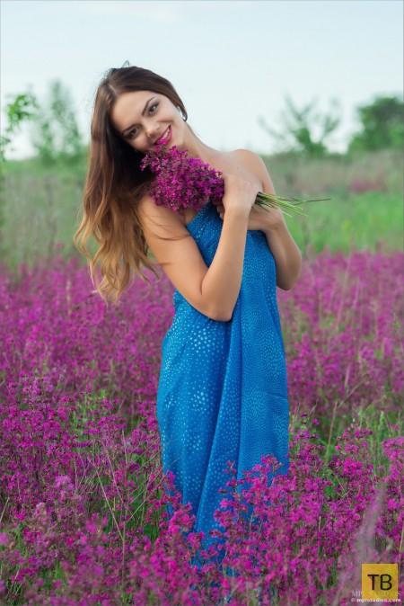 Красотка на цветущем лугу (14 фото)