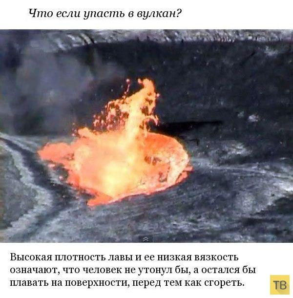 Топ 10: Самые интригующие вопросы, на которые современная наука не может дать точный ответ (10 фото)