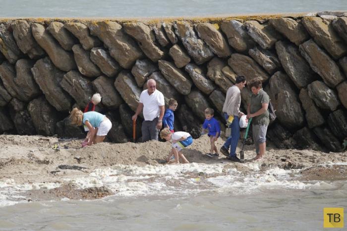 Золотая лихорадка на британском пляже (9 фото)