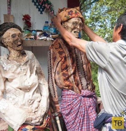 Жесть!!! Церемония чистки трупов в Индонезии (9 фото)