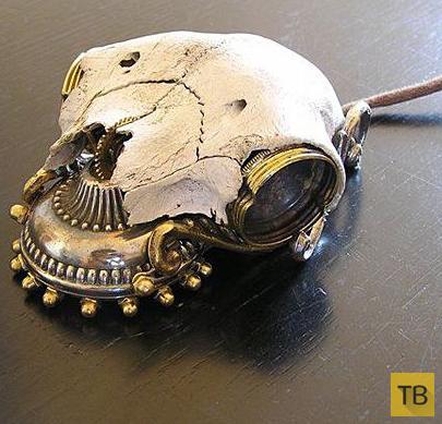 Самые необычные компьютерные мыши (20 фото)