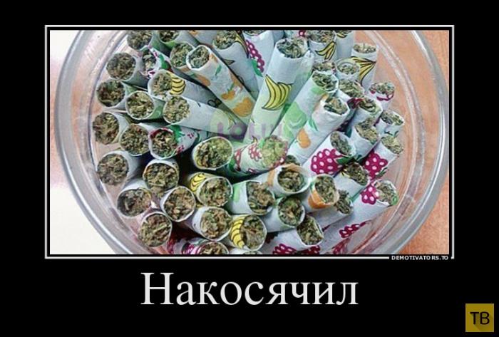 Подборка демотиваторов 16. 09. 2014 (40 фото)