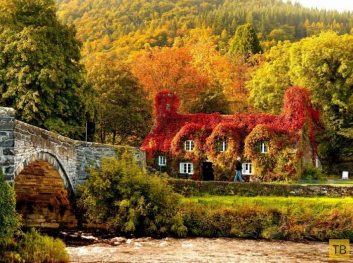 Сказочная осень в разных уголках планеты (20 фото)