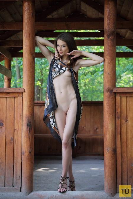 Красивая стройная девушка (15 фото)