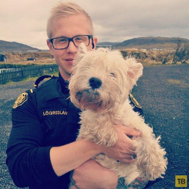Фотодневник полиции Испландии (19 фото)
