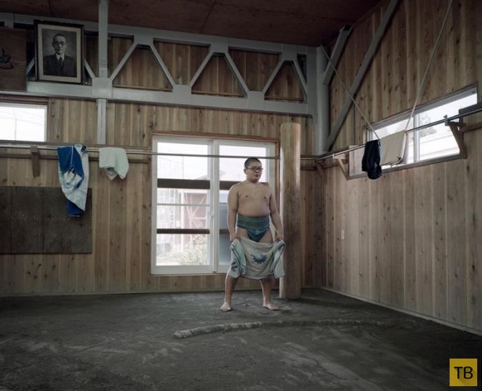 Как живут и тренируются молодые борцы в одной из школ сумо в Японии (19 фото)