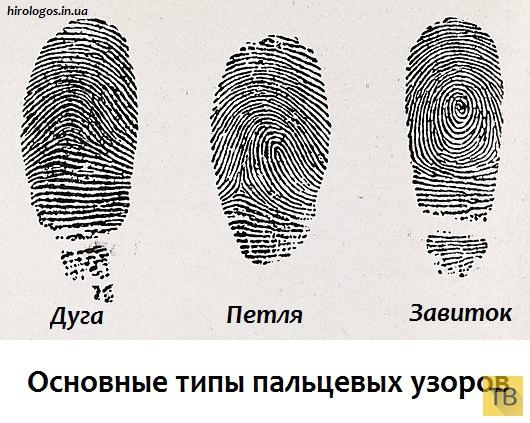 Узоры на пальцах (5 фото)