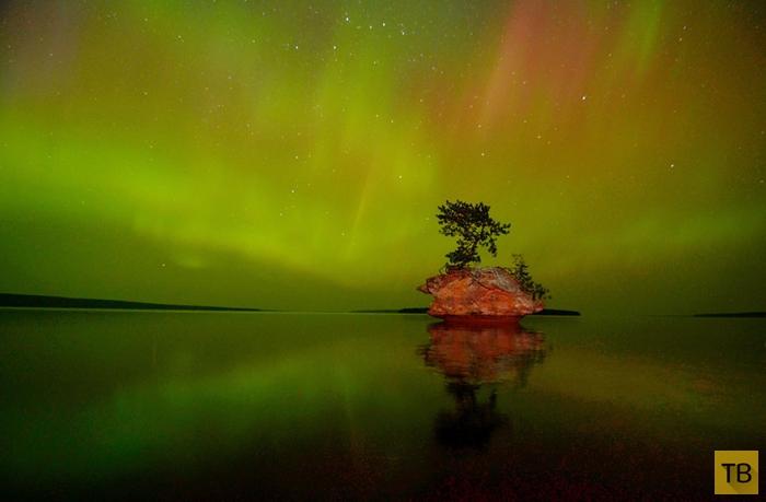 Победители фотоконкурса «Wilderness Forever» (16 фото)