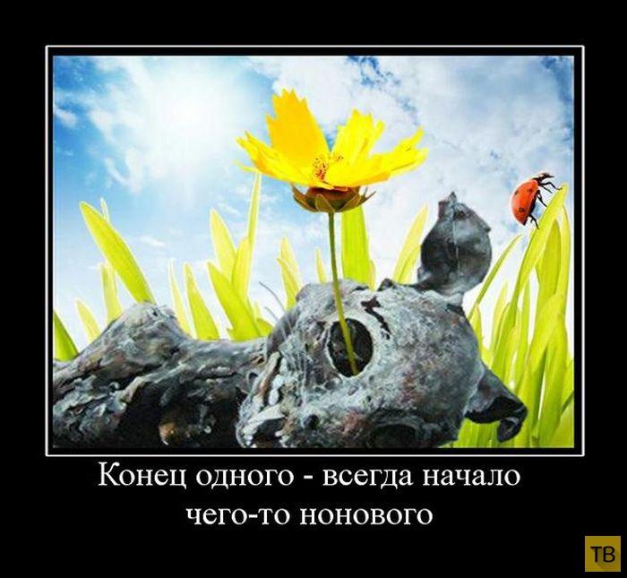 Подборка демотиваторов 26. 09. 2014 (30 фото)