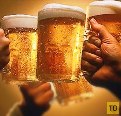 Как правильно выбрать пиво...