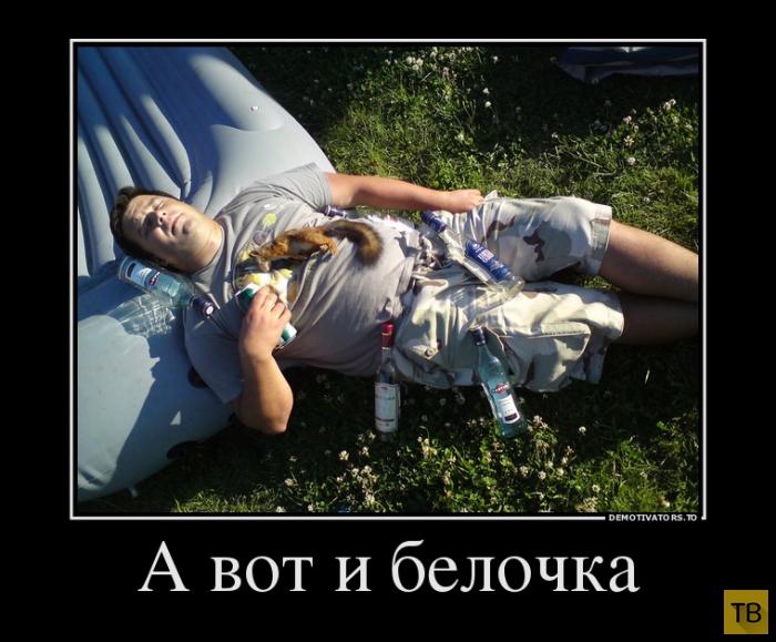 Подборка демотиваторов 27. 09. 2014 (30 фото)