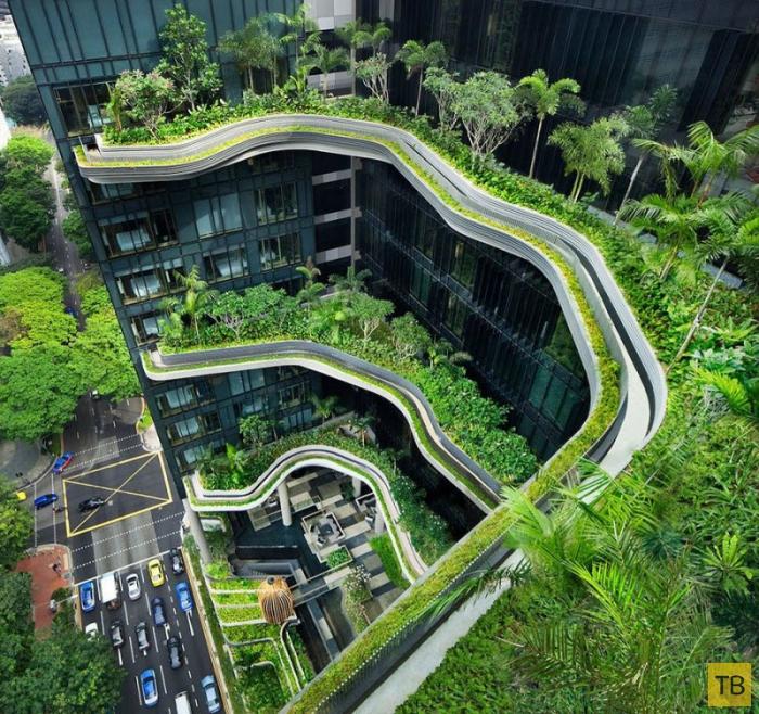 Уникальный сад на фасаде отеля в Сингапуре (27 фото)